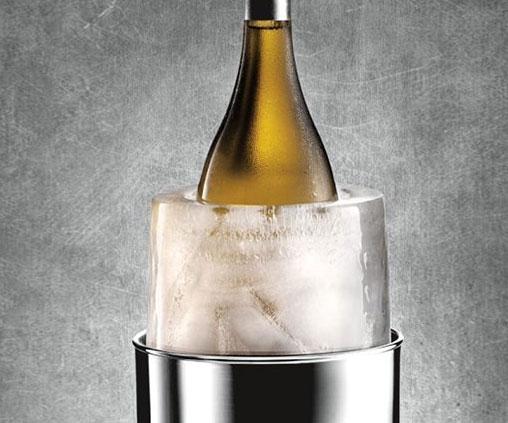 Ice Bottle Chiller Mold