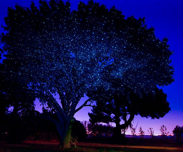 Illuminating Laser Light