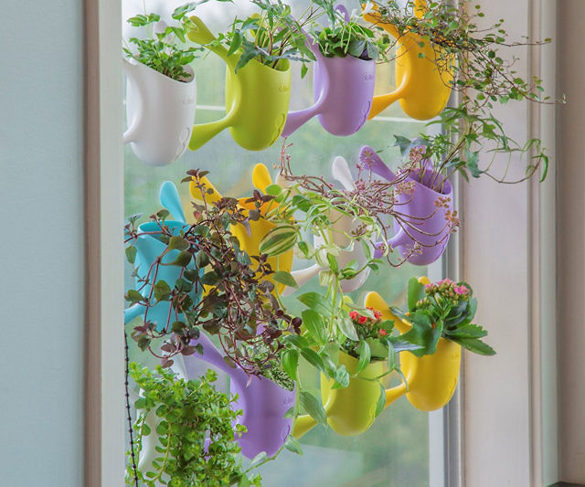 Indoor Suctioned Window Wall Planter