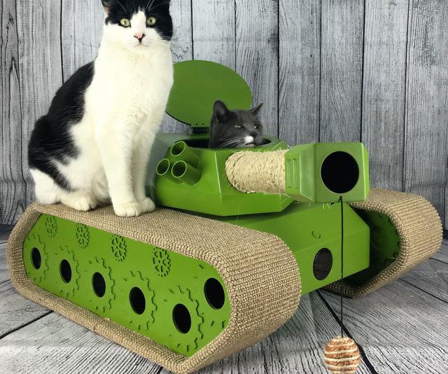 interactive-cat-tank-ludipuss-640x534.jp