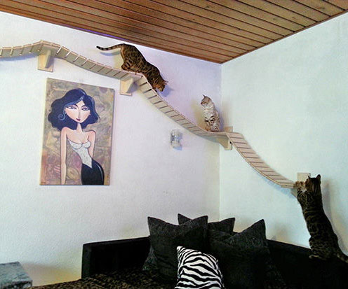 wall mounted cat furniture - Cat Jungle Gym