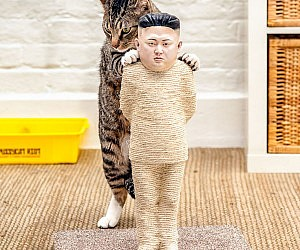 Kim Jong Un Cat Scratch Post