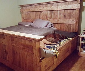 Cool King Bed With Doggy Insert
