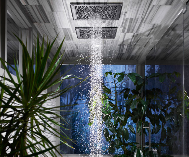 Kohler Real Rain Shower Head
