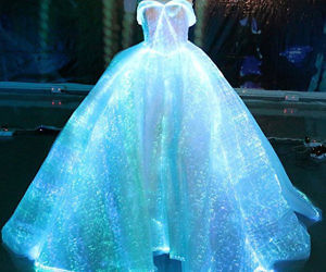 Luminous Fiber Optic Weddi...