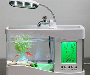 Mini Aquarium Clock