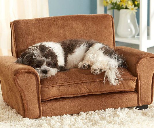 miniature couch for dogs. Black Bedroom Furniture Sets. Home Design Ideas