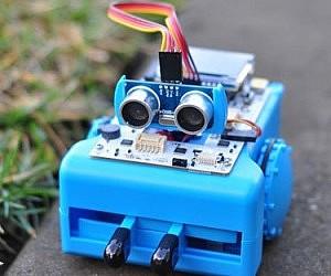Miniature Programmed Robot