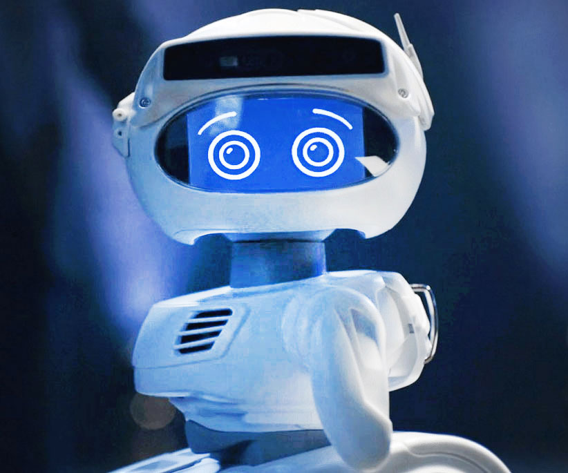 Misty The Personal Robot