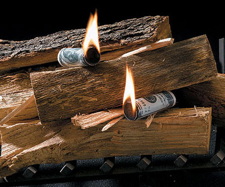 Money To Burn Fire Starters - coolthings.us
