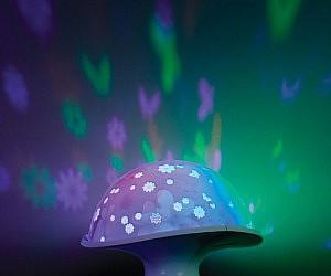 Mushroom Moonlight
