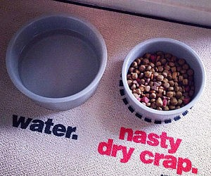 Nasty Dog Food Place Mat