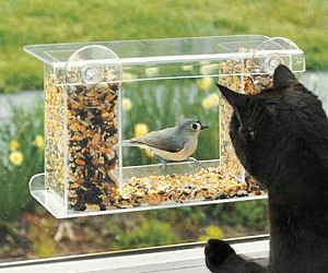 One Way Mirror Bird Feeder