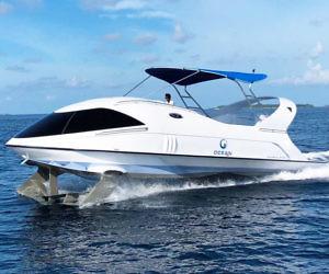 Dolphin Power Boat