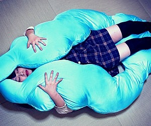 Full Body Cushion