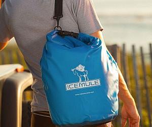 Portable Backpack Cooler