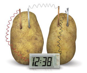 Potato Clock Science Kit