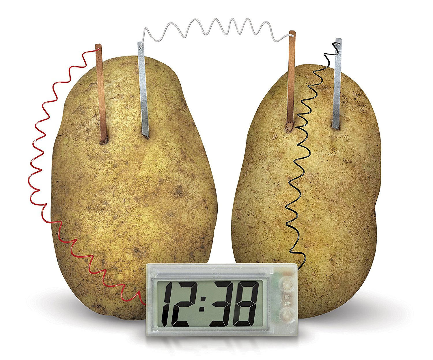 Potato Clock Science Kit - coolthings.us