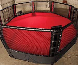 Professional MMA Cage