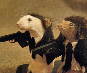 Pulp Fiction Taxidermy Rats