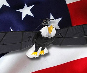 Remote Control Flying Bald Eagle