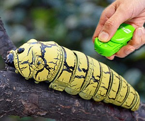 Remote Control Caterpillar