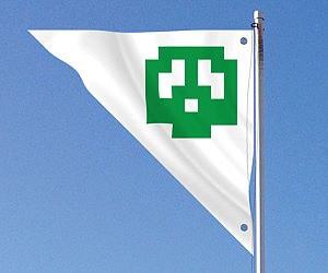 Super Mario Bros Flag