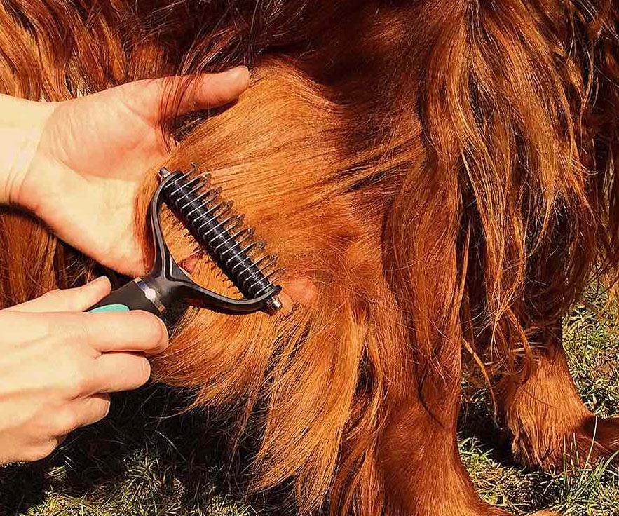 Dog Dematting Tool