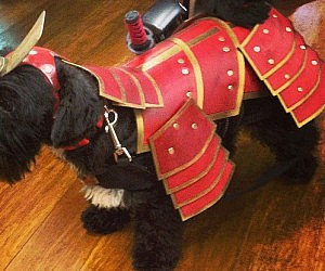 Samurai Dog Costume