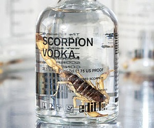 Scorpion Infused Vodka