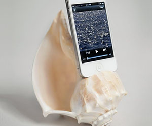 Sea Shell iPhone Speaker