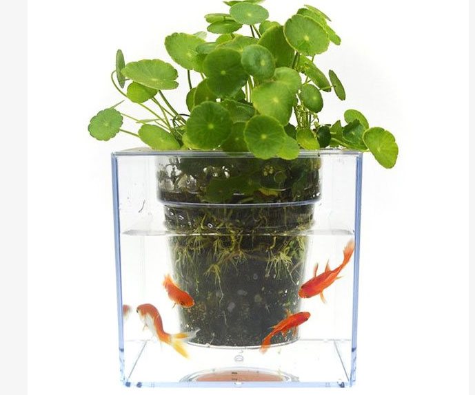 Self-Watering Fish Tank Flowerpot