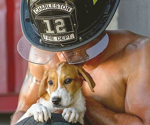 Sexy Firefighters With Puppies Calendar