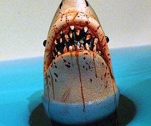 Shark Tub Drain Stopper