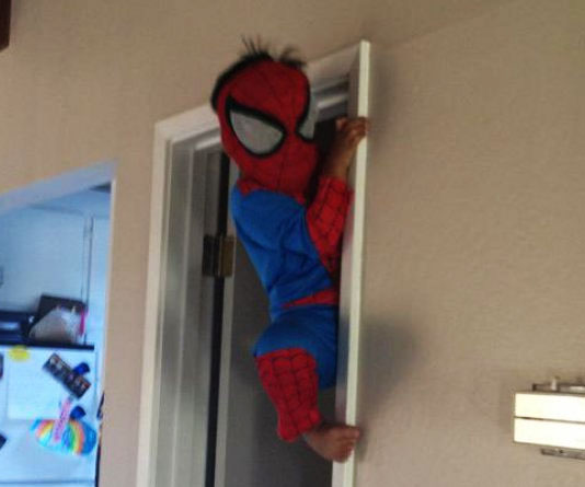 : spidey costumes  - Germanpascual.Com