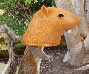 Squirrel Head Feeder