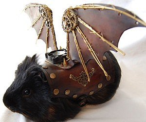 Steampunk Winged Guinea Pig Armor