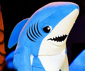 Superbowl Shark Costume