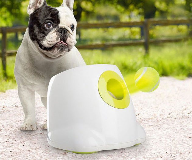 Automatic Tennis Ball Launching Dog Toy