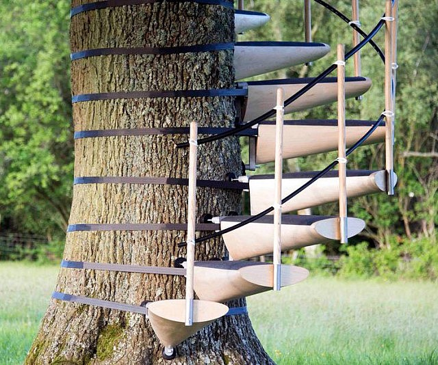 Lovely Tree Trunk Spiral Staircase