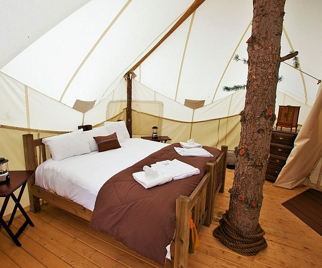 Treehouse Tent & Tent