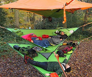 & Multi-Level Hammock