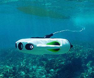 Bionic Wireless Underwater Fish Drone