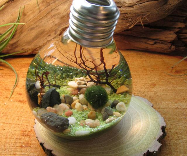Underwater Terrarium Light Bulb