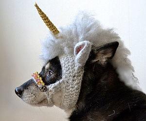 Crocheted Unicorn Dog Mask