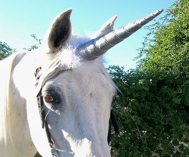 Diy Unicorn Horn Costume Piece For A Live Horse By T