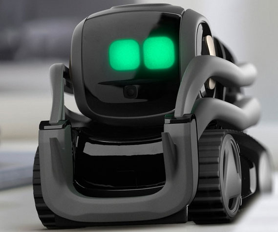 Vector Mini Personal Robot