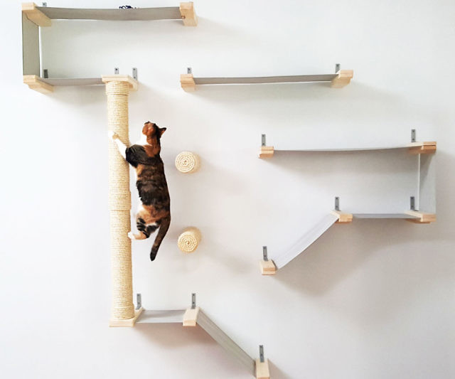cat hammock activity center hammock activity center  rh   thisiswhyimbroke