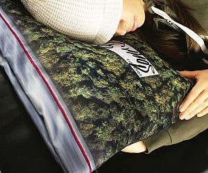 Stash Bag Pillow Case