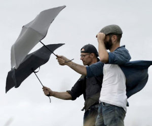 Wind Resistant Storm Umbre...